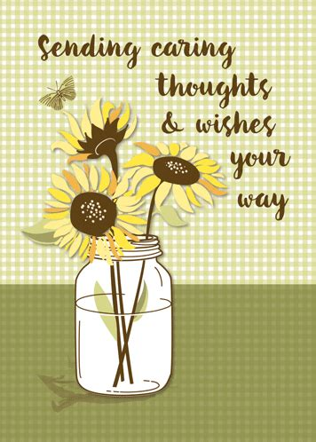Send Caring Thoughts With Sunflowers