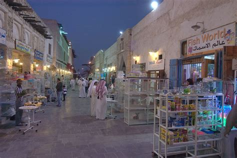 Photo 833-11: Pet market in Souq Waqif at evening