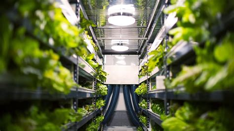 This Vertical Farm Wants To Be An Agriculture Company, Not