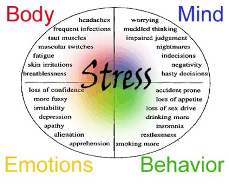 Stress Management Toronto - Proven Techniques For You