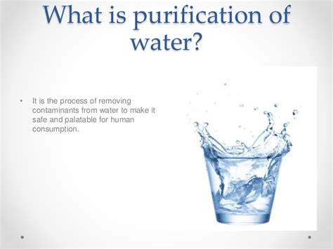 Why should we purify water?