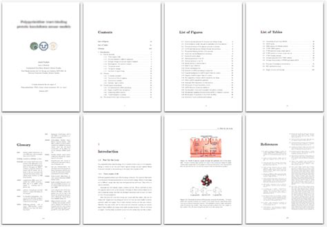 The Best College Essay Ever!   Patch dissertation chapter