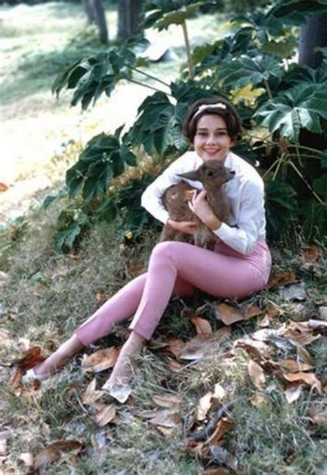 26 Candid Photographs of Audrey Hepburn With Her Favorite