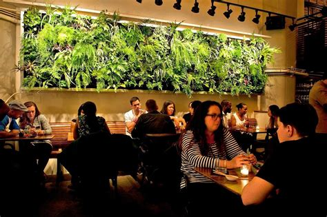 Atrium Restaurant Living Wall by Woodland Landscapes in
