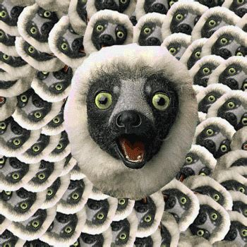 Zoboomafoo GIFs - Find & Share on GIPHY