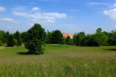 Free Images : landscape, tree, nature, grass, structure